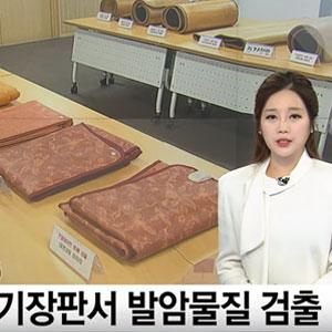 전기장판류 일부 제품, 발암물질 기준치 초과 /YTN뉴스